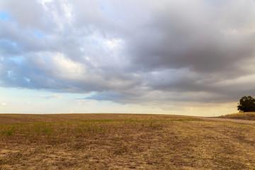 Field under clouds