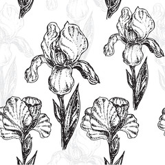seamless pattern flowers iris