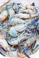Fresh Shrimp / Prawn on ice at the raw food market, Bangkok Thai