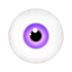 Image of realistic human eye ball with colorful pupil, iris. Vector illustration isolated on white background.