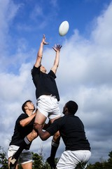 Rugby players jumping for line out
