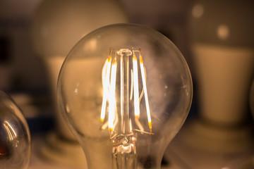Led filament cob lamp - new product