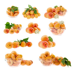 set of apricot isolated