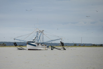 Shrimping boat dragging nets in South Carolina