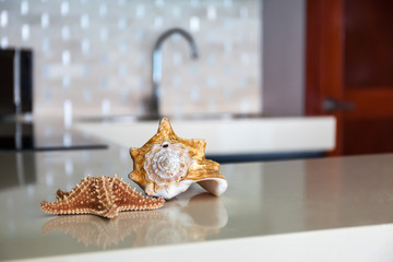 Starfish and seashell on stone table top at modern  kitchen