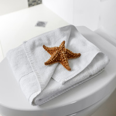 White toilet with starfish on towel in a bathroom