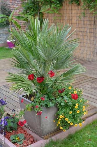 petit palmier et des fleurs dans un pot sur une terrasse. Black Bedroom Furniture Sets. Home Design Ideas
