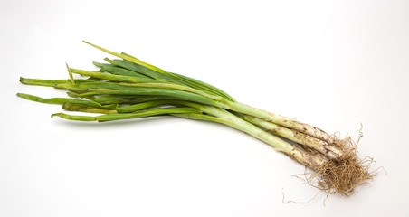 Calcots, a typical vegetable from the Catalonia region in Spain.