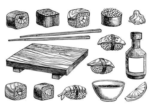 Vector hand drawn sushi set.