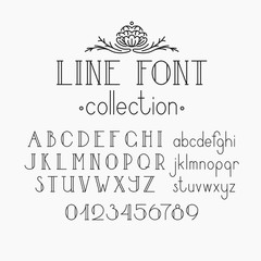 Vector mono line decorative font and numerals.