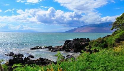 Tropical Maui Hawaii ocean scene.  Cloudscape, landscape, seascape.  Native plants and lava rock formations.