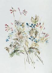 Hand drawn wildflower bouquet