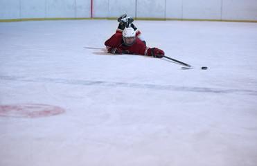 ice hockey player portrait