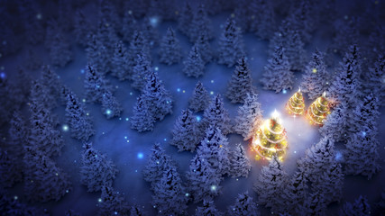 illuminated christmas trees in pine woods at night, aerial view