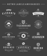 Retro Logotypes set vector vintage graphics design