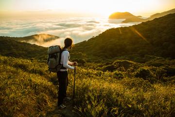 Hiker enjoying the Sunset and Rain Forest