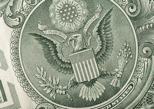 Dollar eagle banknote close up.