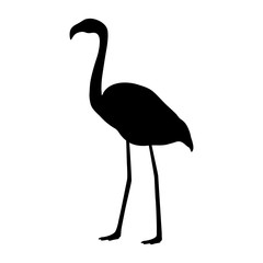 flamingo silhouette on a white background