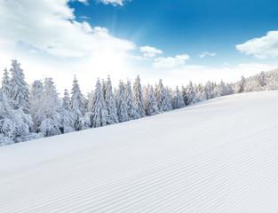 Fototapete - Winter snowy landscape