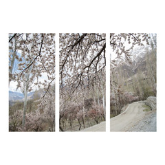 hunza valley, Pakistan photo collage frame on isolated backgroun