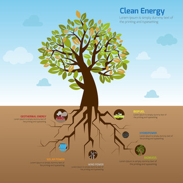 Tree root representing clean energy infographic diagram template design with decorative icon in blue sky of green world environment, create by vector