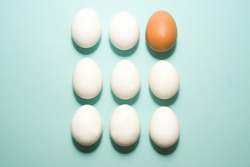 Chicken eggs of different colors on blue surfase