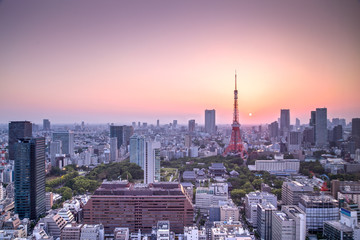 Tokyo city skyline at sunset, Japan