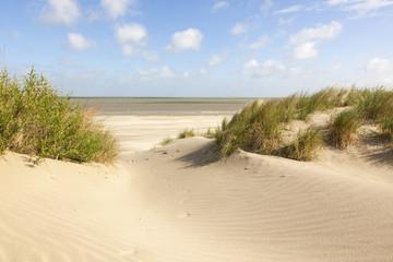 Dünen am Nordseestrand, Knokke, Belgien Fototapete