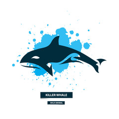 Artistic killer whale icon on the colorful blots background. Stylized graphic illustration. Vector wild animal.