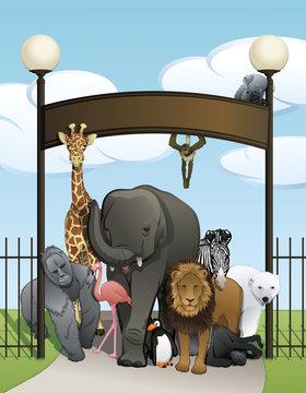 A variety of zoo animals at zoo gate welcoming visitors. Animals include gorilla, giraffe, flamingo, elephant, lion, zebra, polar bear, chimpanzee, monkey pelican, and koala bear.