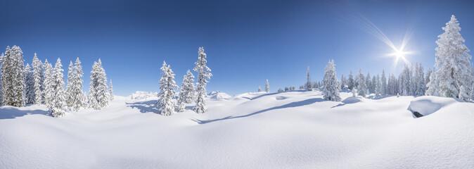 Winterpanorama - Verschneite Winterlandschaft Wall mural