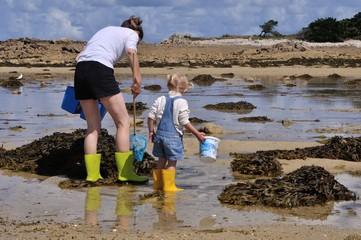 Pratique de la pêche à pied en bord de mer