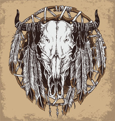 Hand drawn cow skull and feathers illustration.