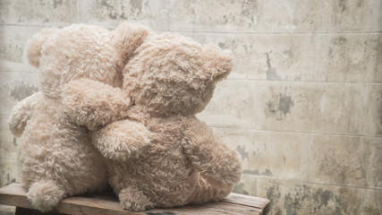2 teddybears embracing, photo taken from behind