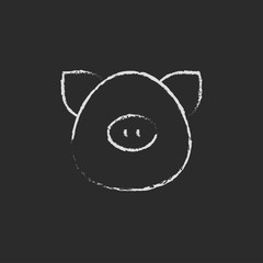 Pig head icon drawn in chalk.