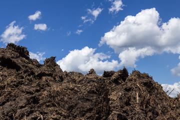 Dung heap