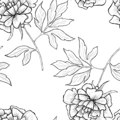 Sketch of flowers by hand on an isolated background