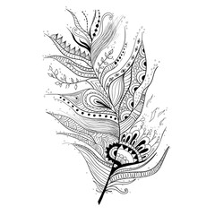 Illustration of feather graphic style