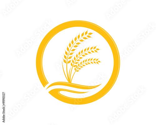 Wheat Logos Design Ideas