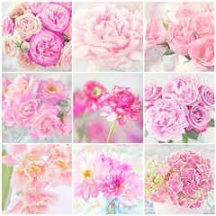 collage of a blooming pink flowers close-up.