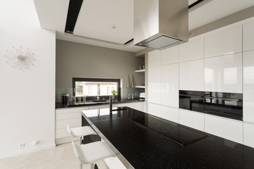 Fancy black and white kitchen