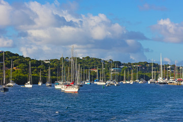 Fototapete - Yachts and catamarans near St Thomas Island, USVI. Magnificent colorful view of the tropical island bay on a sunny morning.