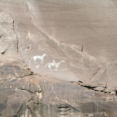 Canyon de Chelly Precolumbian Pictographs