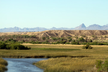 Marsh and mountains near the Colorado River at Havasu National Wildlife Refuge in Arizona