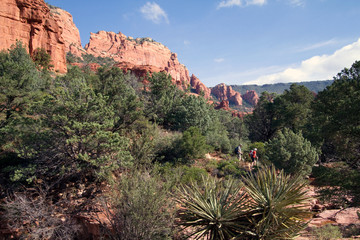 Hikers, cacti, pinyon pines, and cliffs along Schnebly Hill Road near Sedona, Arizona
