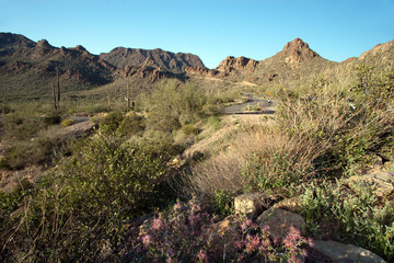 Gates Pass in Tucson Mountain Park in Arizona's Sonoran Desert