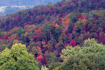 Great Smoky Mountains National Park in full autumn color