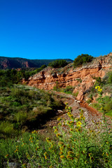 Geological rock formations at Caprock Canyons State Park in Texas
