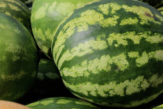 counter with watermelons