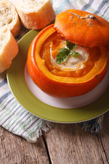 Dietary Puree soup with sour cream and basil in a pumpkin vertical